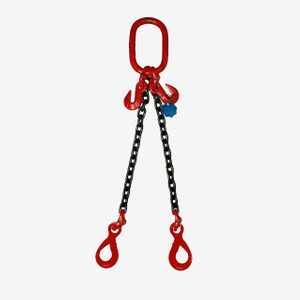 2 Legs Lifting Chain Sling - Eye Selflock Hook - G80